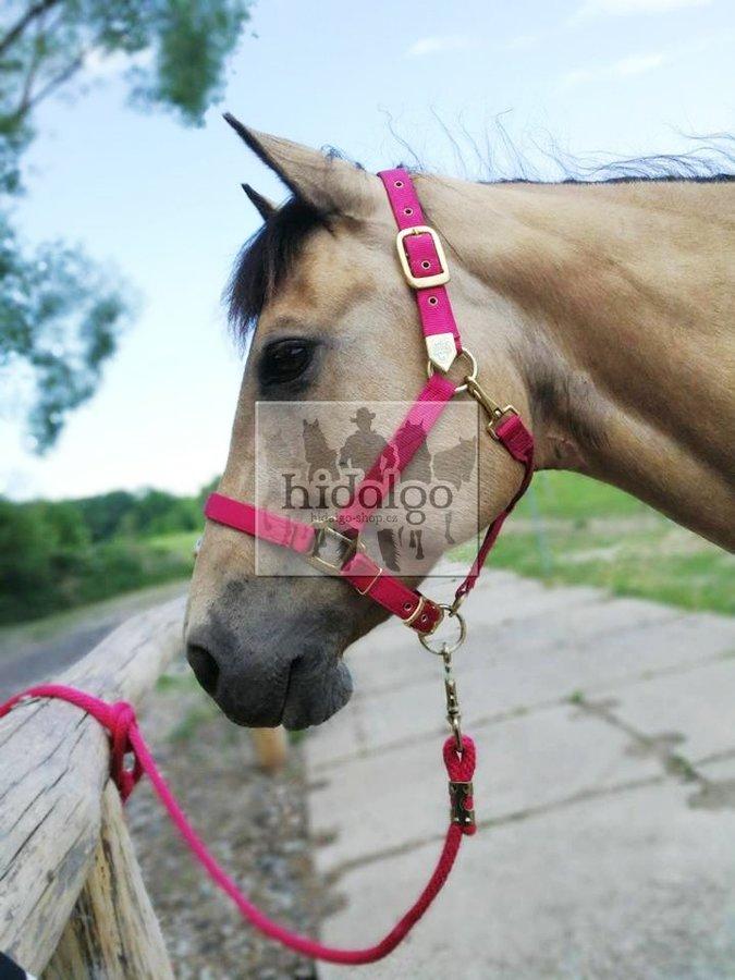 Fialová ohlávka Hamilton - pony