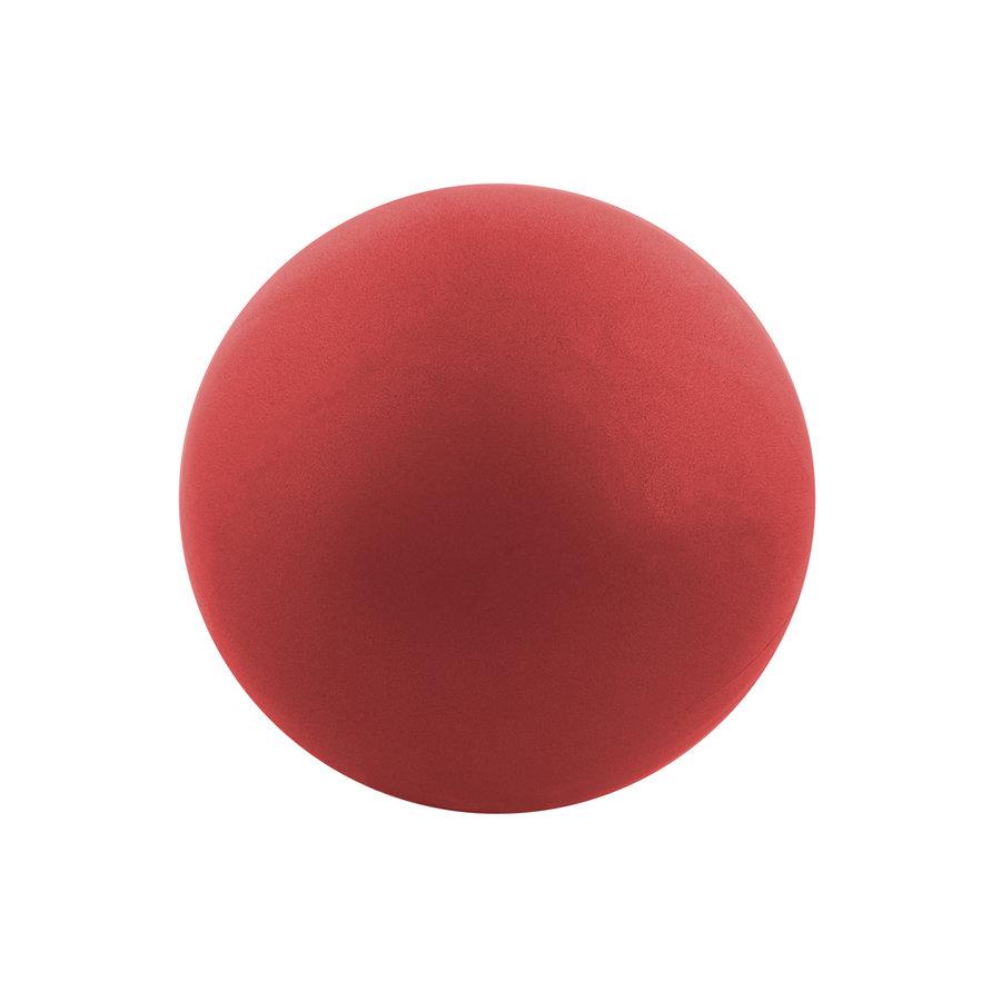 Gymnastický míč - Aerobic ball Spartan 25 cm