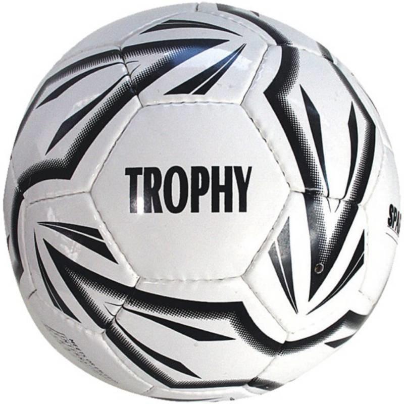 Fotbalový míč - Fotbalový míč SPARTAN Trophy vel. 5