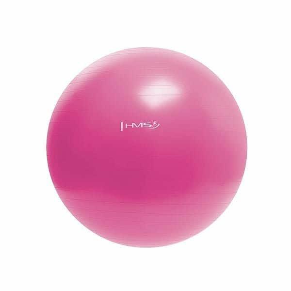 Růžový gymnastický míč HMS - průměr 55  cm