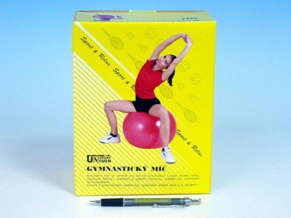 Gymnastický míč Teddies