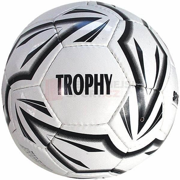 Fotbalový míč - Fotbalový míč SPARTAN Trophy 5