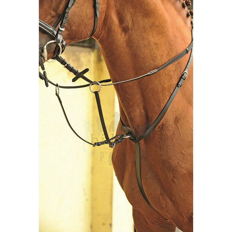 Černý martingal HKM - pony