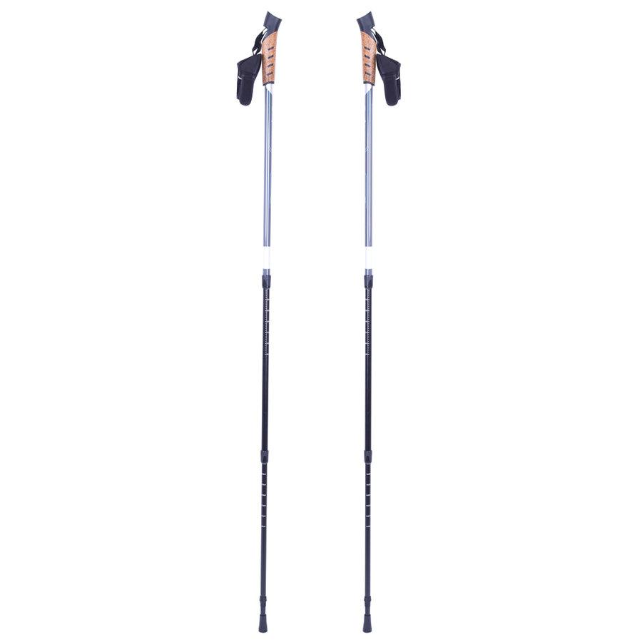 Modrá trekingová hůl Vilarica, inSPORTline - délka 135 cm