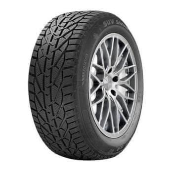 Zimní pneumatika Riken - velikost 225/45 R17