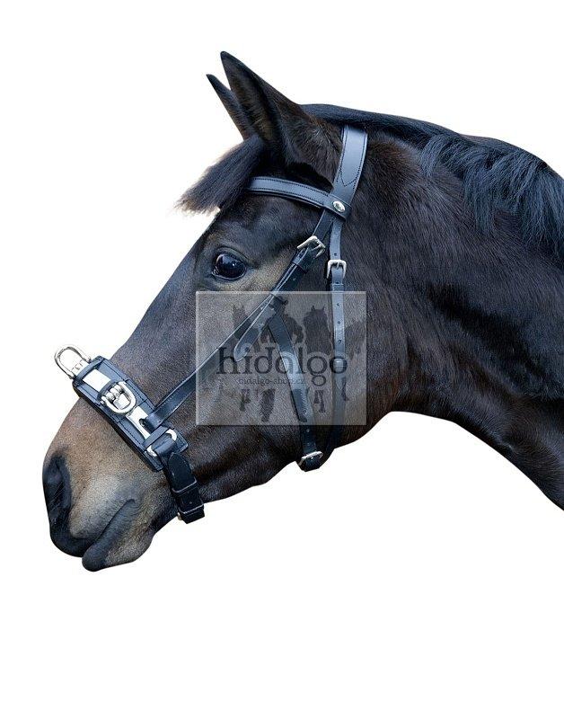 Černá lonžovací ohlávka Harry's Horse