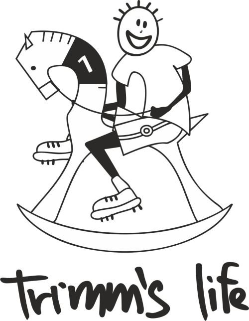Šedé pánské tričko s krátkým rukávem Horse, Trimmslife - velikost M