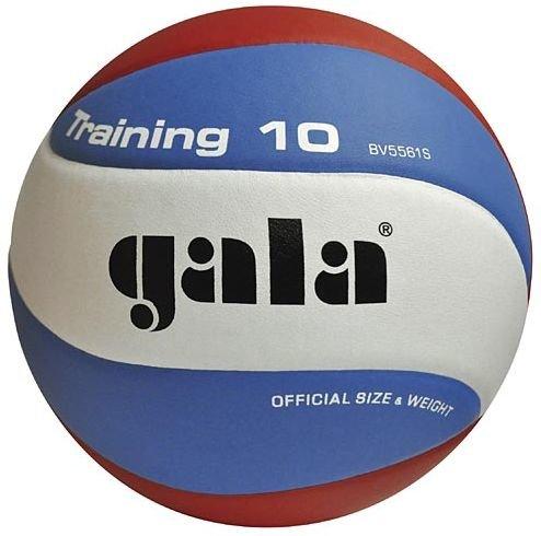 Různobarevný volejbalový míč BV5561S, Gala - velikost 5