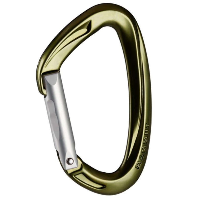 Karabina - Horolezecká karabina MAMMUT Crag Key Lock Straight - leaf