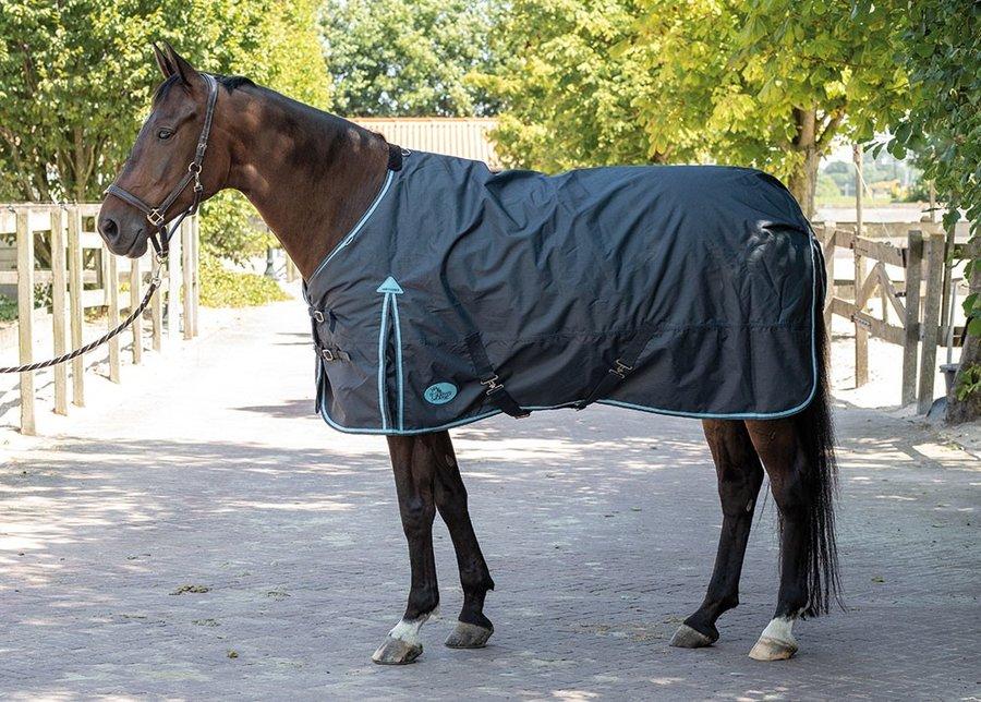 Deka na koně Harry's Horse