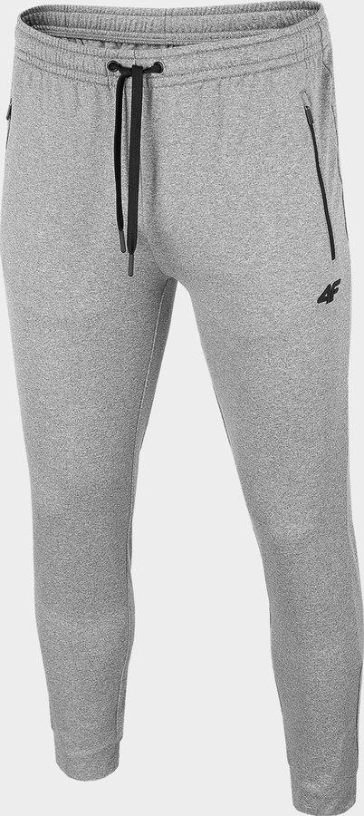 Šedé pánské funkční kalhoty 4F - velikost XL